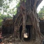 Destination Cambodia | Siem Reap Last Day